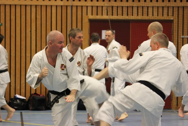 Anders and Stefan practice gōhō