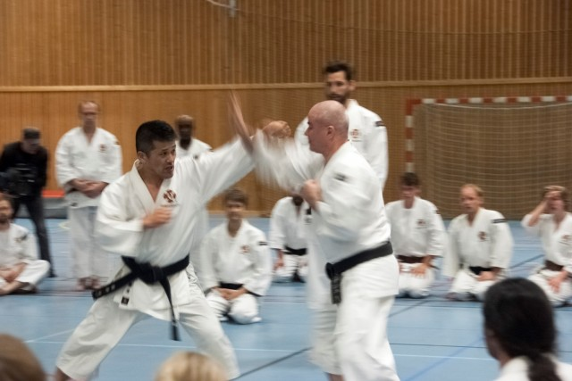 Full speed when Fujii-sensei teaching gōhō