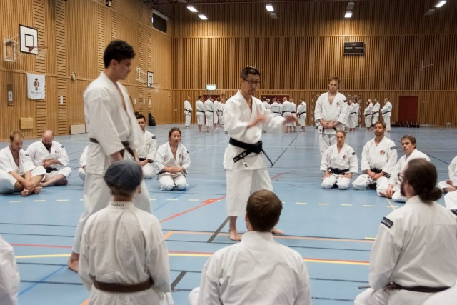 Kaihoko-sensei teaching in the group for 1st kyū to 2nd dan.