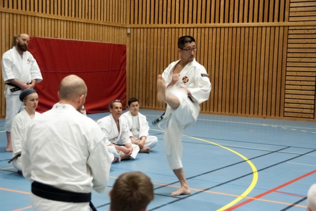 Kaihoko-sensei teaching kicks