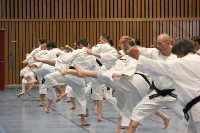 Kihon (basic practice)
