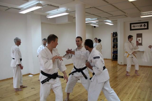 Åke-sensei undervisar Kenneth & Piyush