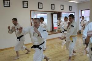 Kihon (grundträning) en del av allt man tränar i Shorinji Kempo