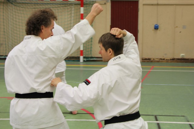 Peter (till vänster) från Bromma fick chansen att träna med Per Lindblom, 5 dan, och få hjälp med tenchiken 2 sōtai.