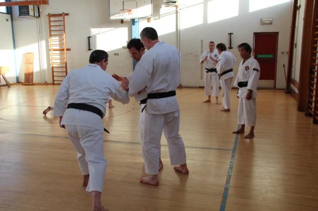 Några shibu-chō tränar under överinseende av Maehara-sensei.