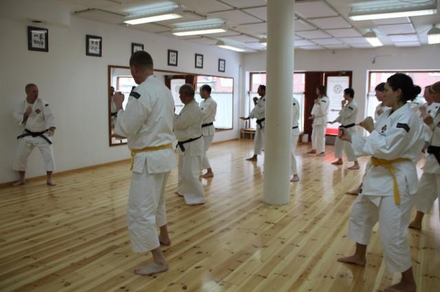 Anders-sensei undervisar tanen hōkei och alla får chansen att träna det framför spegeln