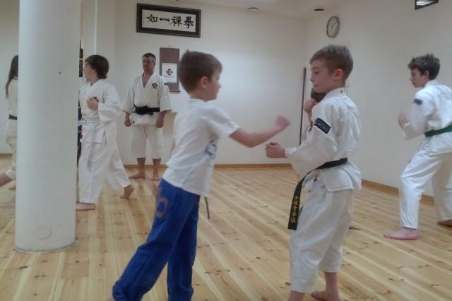 Neo tränar med en av de som kom och provade på Shorinji Kempo under sportlovet