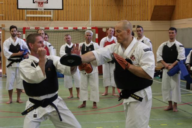 Åke-sensei undervisar övningar med mitts.