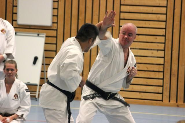 Fujii-sensei visar teknik med Anders-sensei
