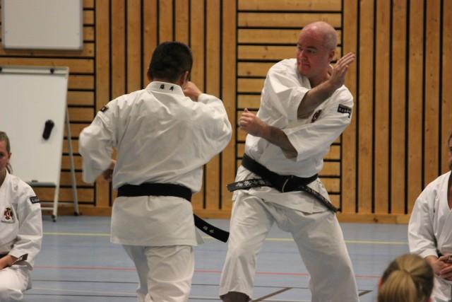 Full intensitet när Fujii-sensei instruerar, här tillsammans med Anders-sensei