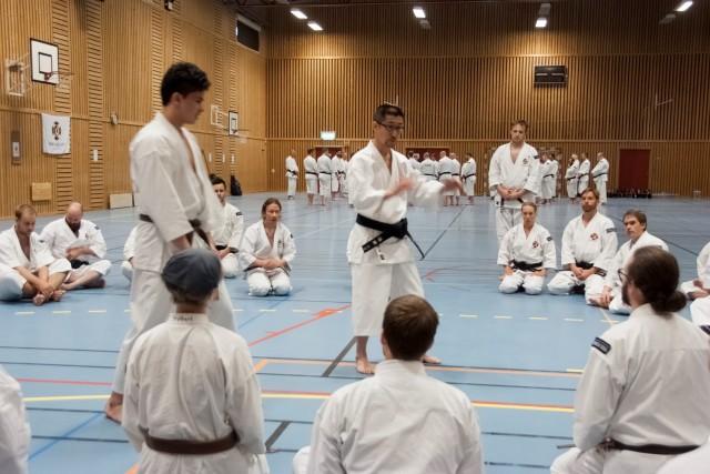 Kaihoko-sensei undervisar i gruppen 1 kyū till 2 dan.