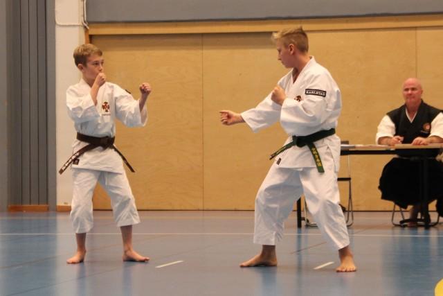Neo och Filip vann klassen för juniorer med sin embu.